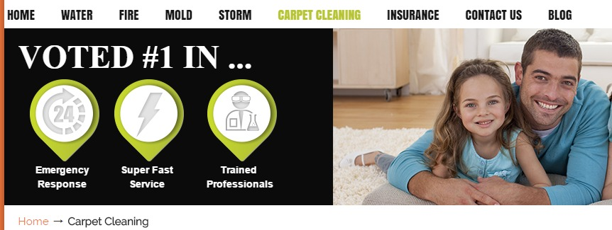 Downriver Carpet Cleaning Services