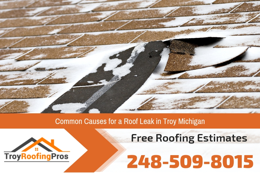 Common Causes for a Roof Leak in Troy Michigan