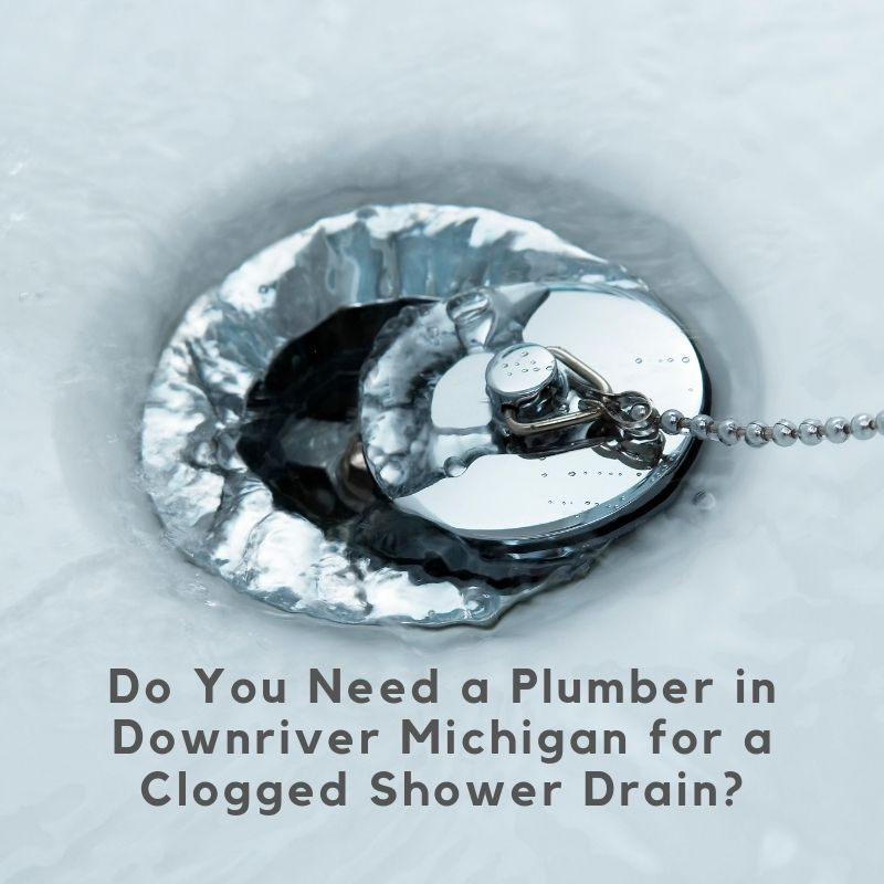 Do You Need a Plumber in Downriver Michigan for a Clogged Shower Drain?