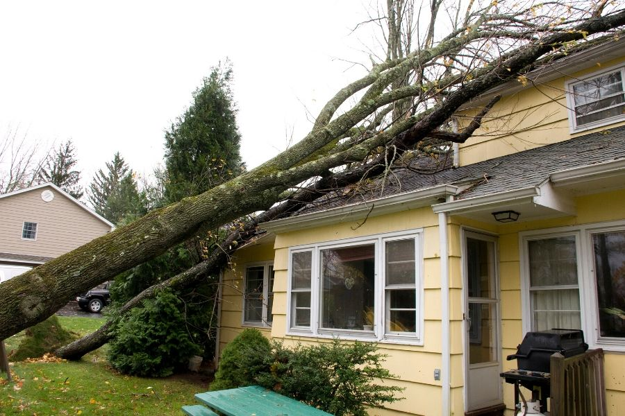 What to Do if you Have Storm Damage in Ann Arbor Michigan